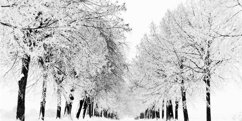 winter_season_5-wallpaper-1152x864 (Medium)